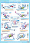 Abdominal Exercises Body Building Poster Core Muscle Workout Sit Up Gym Chart