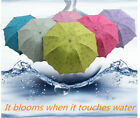 New Windproof Anti UV Clear/Rain Korean Lacework Princess Folding Umbrella