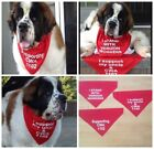 Custom Large Bandana for your Dog, Keep Chest Clean! Saliva Scarf