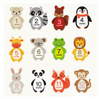 Внешний вид - Baby Infant Monthly Mom Weekly Stickers New Born Party Shower 1 to 12 Months SM