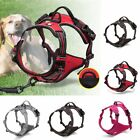 Adjustable Pet Dog Cat Puppy Harness Front Range Soft Mesh Safety Leash US STOCK