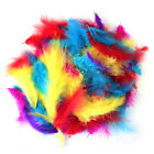 200 x Fluffy Marabou Feathers Party Wedding Mixed Color 8-15cm Craft Decor DIY