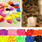 20pcs Pet Dog Cat Nail Caps Claws Paw Cover Anti Scratch Protector With Glue DIY