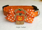 Cute Halloween Bear Dog Collar Size XS-L by Doogie Couture