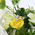 Opening Type Zircon Plated Rings Golden/Silver Fashion Jewelry Accessories IV