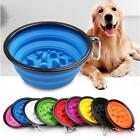 Foldable Dog Bowl Slow Food Feeder Interactive Bloat Healthy Pet Supply Cup Diet