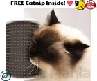 Groomer™ - Your Cat Will Groom Itself And LOVE It!