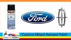 Custom Mixed Automotive Touch Up Spray Paint - For 2013 Ford Colors