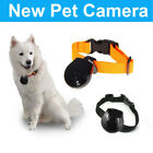 Automatic Pet Collar Mini Camera DVR Video Recorder Monitor For Dog Cat HOT