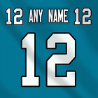 Carolina Panthers Dark NFL Football Jersey Any Name Any Number Pro Lettering Kit $39.99 CAD on eBay
