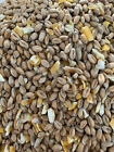 MIXED POULTRY CORN FOOD/FEED, HIGH QUALITY 2kg 1kg 500g 250g