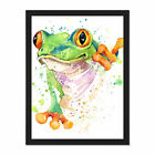Watercolour+Frog+Bright+Framed+Wall+Art+Print+18X24+In