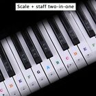 Piano Keyboard Stickers Decal Label Note For Beginners Learning 37 49 61 88 Keys