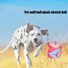 Training Home Relieve Emotion Dog Cat Feeding Chewing Pet Sniffing Ball Bite Toy