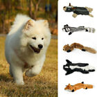 5 Types Puppy Funny Sound Coonskin Squirrel Mephitine Raw Fox Chew Toy Dog Toy