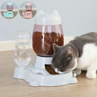 Cat Dog Automatic Pet Feeder Large Food Dispenser&Water Fountain Drink Bowl Dish