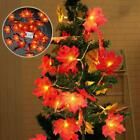 20 LED Fall Maple Leaves Fairy String Light Autumn Leaf Lamp Garland/Decor