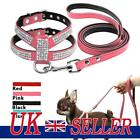 UK Didog Dog Harness And Leash set Suede Leather Rhinestone Pet Harnesses Leads