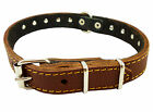 "Genuine Leather Studs Dog Collar 13""-17"" neck, 3/4"" wide for Medium Dogs"