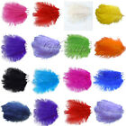 10PCS Ostrich Feathers approx 20-25cm/8-10inch wedding party