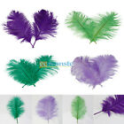 New 10Pcs 12-14inch / 30-35CM Ostrich Feathers for Wedding Centerpieces & Crafts