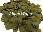 Best Quality+Value~6% Spirulina Algae Wafer food for Tropical fish+bottom feeder