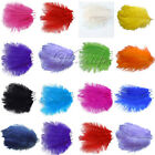 "20PCS Natural Ostrich Feathers approx 20-25cm/8-10"" Wedding Party Xmas Decor"