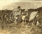1913 COTTON PICKERS LITTLE CHILDREN BELLS TEXAS PHOTO LEWIS HINE DEPRESSION