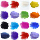 "100PCS Ostrich Feathers approx 10""-12"" 25cm-30cm Wedding Party Decorations"