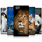 HEAD CASE WILDLIFE PROTECTIVE HARD BACK CASE COVER FOR SONY XPERIA M C1905 C1904