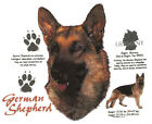 GERMAN SHEPHERD, Dog, With Breed Origin, New T-shirt