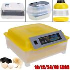 Automatic Digital Incubator brooder poultry Chicken Quail Duck Goose 24 48 eggs