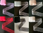 Wholesale 10 Yard  Bilateral Embroidered Net Lace Trim Ribbon 7 color choice