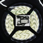 5050 SMD Flexible 5M 300 Led  Strip Waterproof  White Red Blue Warm 12V 5A Power