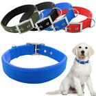 Buckle Double Layer Nylon Padded Inside Dog Collar 5 Size 4 Colors Heavy Duty