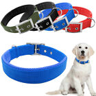Buckle Double Layer Nylon Padded Inside Dog Collars 5 Size 4 Colors Heavy Duty