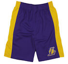 NBA Basketball Kids / Youth Los Angeles Lakers Team Shorts - Purple