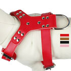 Didog Soft Plain Leather Chest Plate Pet Dog Harness for Dogs S M Pink Black Red