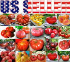 30+ ORGANICALLY GROWN GIANT Tomato Seeds Mix 22 Varieties Heirloom NON-GMO USA cheap