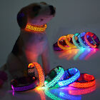Waterproof LED Flashing Light Band Belt Safety Pet Cat Dog Collar Size S/M/L/XL