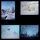 FIBRE OPTIC LED CANVAS PICTURE BEAR CABIN ROAD PENGUIN POLAR REINDEER SNOW - NEW