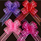 Excellent Pull Bows Sheer With Metallic Stripes 50mm Gift wrap AC18