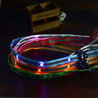 DE STOCK 7 Colors LED Dog Pet Glow Safety Rope Lead Flashing Lights Leash