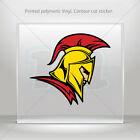 Decals Stickers Lacedaemon Spartan Warrior Car Motorbike Bike Garage mtv ZKXKR