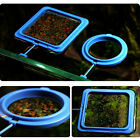 Feeding Ring Aquarium Tank Fish Station Floating Food Tary Feeder Square/Circle
