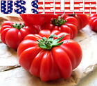 20+ ORGANICALLY GROWN Italian Pantano Romanesco Tomato Seeds Heirloom NON GMO US