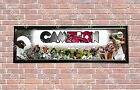 Personalized Customized Arizona Cardinals Name Poster Sport Banner with Frame $35.0 USD on eBay