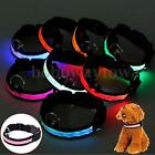 LED Glow Collar Dog Puppy Pet Tag Night Light Safety Flashing Leash Harness New