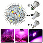 Full Spectrum 28W LED Grow Light Hydroponic Lamp Plant Light Bulb E14/E27/GU10