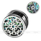 Pair 00G-3/4'' Steel Abalone Shell Flesh Screw Ear Gauges Tunnels Plugs Expander